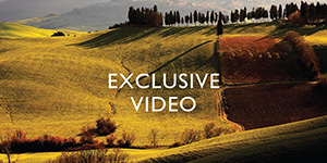 Exclusive Video